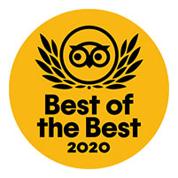 Trip advisor「Best of the best 2020」